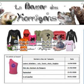 Histoire de partenaire – Le Bazar des Korrigans