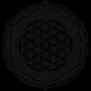 T shirt fleur de la vie symbole de l 39 nergie spreadshirt - Symbole de la vie ...